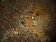 "Зачатъци на пещерни бисери. Автор: Константин Стоичков ПК ""Хеликтит"" София."